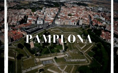2010 ALCARACEJOS, BASAURI Y PAMPLONA PARTÍCIPES Y GANADORES DEL «PREMIO REINA SOFÍA»